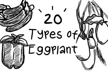 types_of_eggplant_illustrations