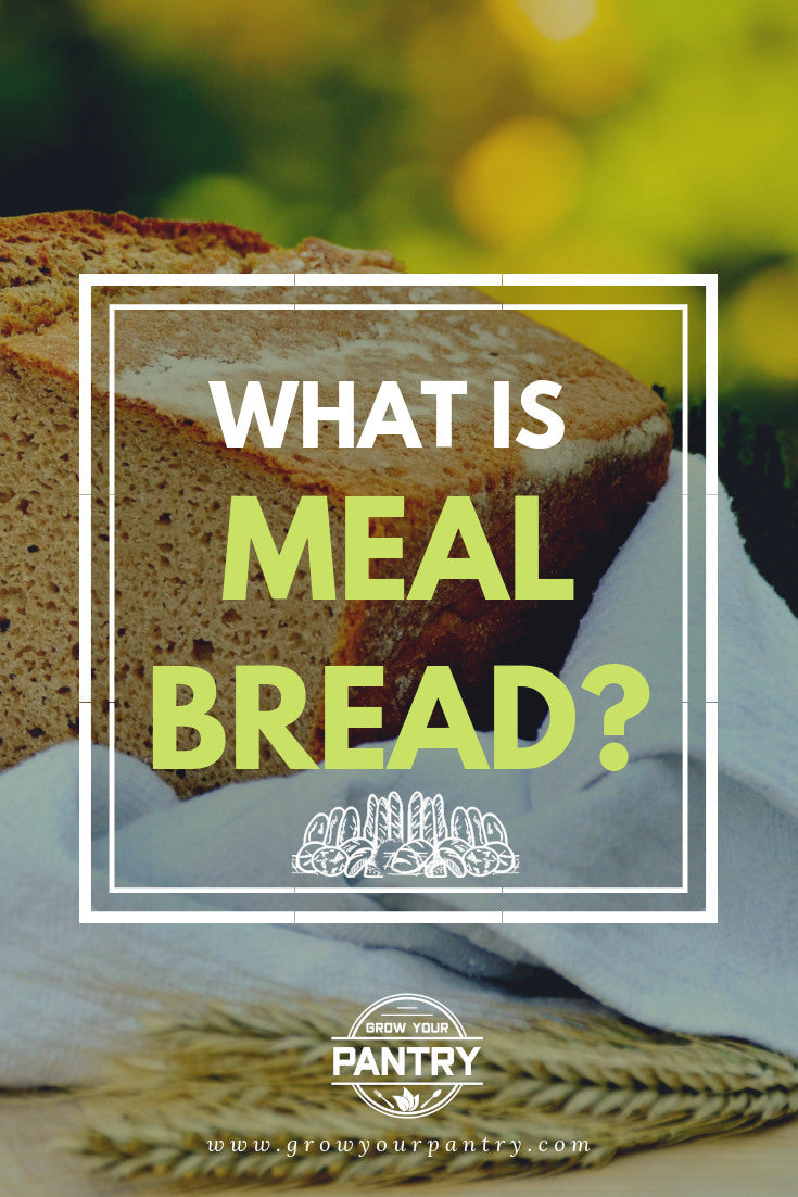 what_is_meal_bread_infographic