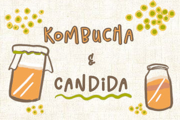 kombucha_and_candida_infographic