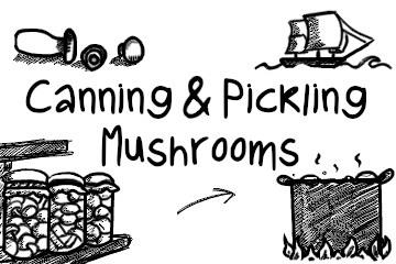canning_mushrooms_infographic