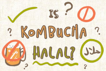is_kombucha_halal_infographic