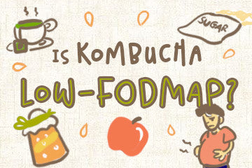 is_kombucha_low_fodmap_infographic