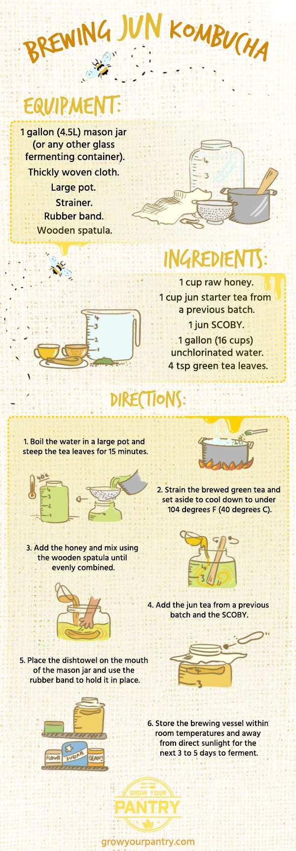 how_to_brew_jun_tea_infographic