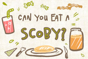 Can_you_eat_a_scoby