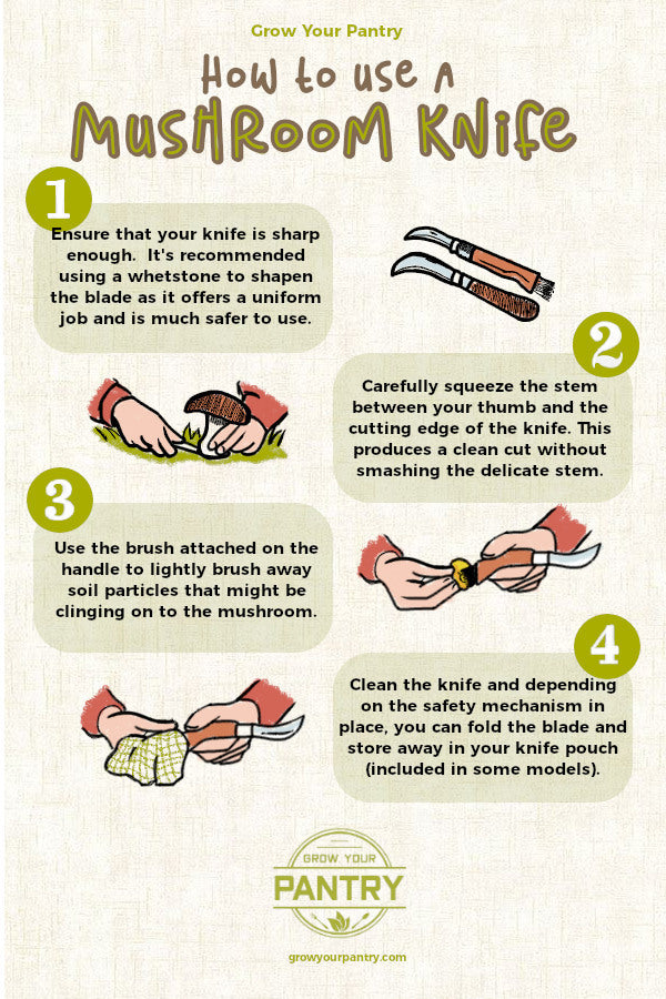 how_to_use_a_mushroom_knife_infographic