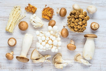 mushrooms_varieties