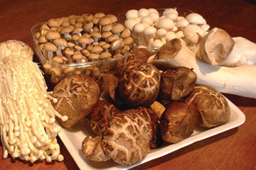 varieties_of_mushrooms