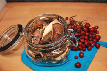 dried_mushrooms_in_jar