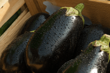 eggplant_in_wooden_tray