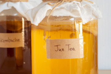 kombucha_and_jun