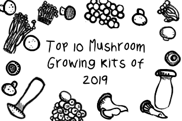 growing_mushrooms