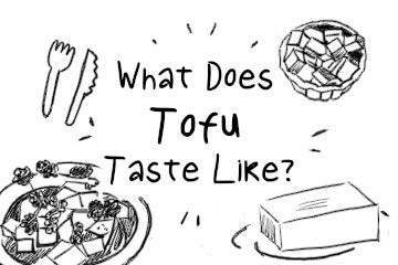 what_does_tofu_taste_like_illustration