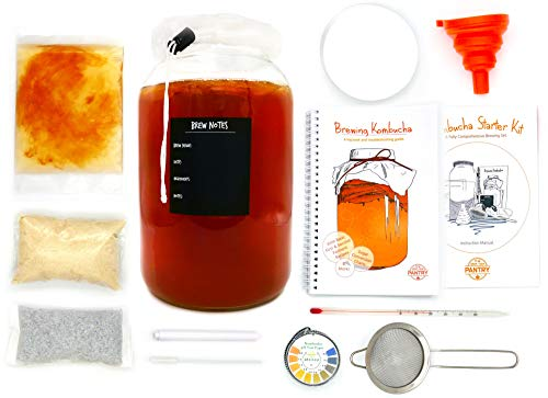 Kombucha Starter Kit: SCOBY, Tea, Jar, Manuals