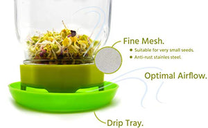 Complete Sprouting Jar Kit [Glass Jar + Guide Included Too]