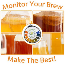 Load image into Gallery viewer, pH Test Strips - Quick Test For Kombucha