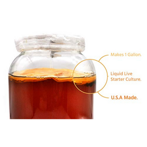 Kombucha SCOBY - Live Starter Culture