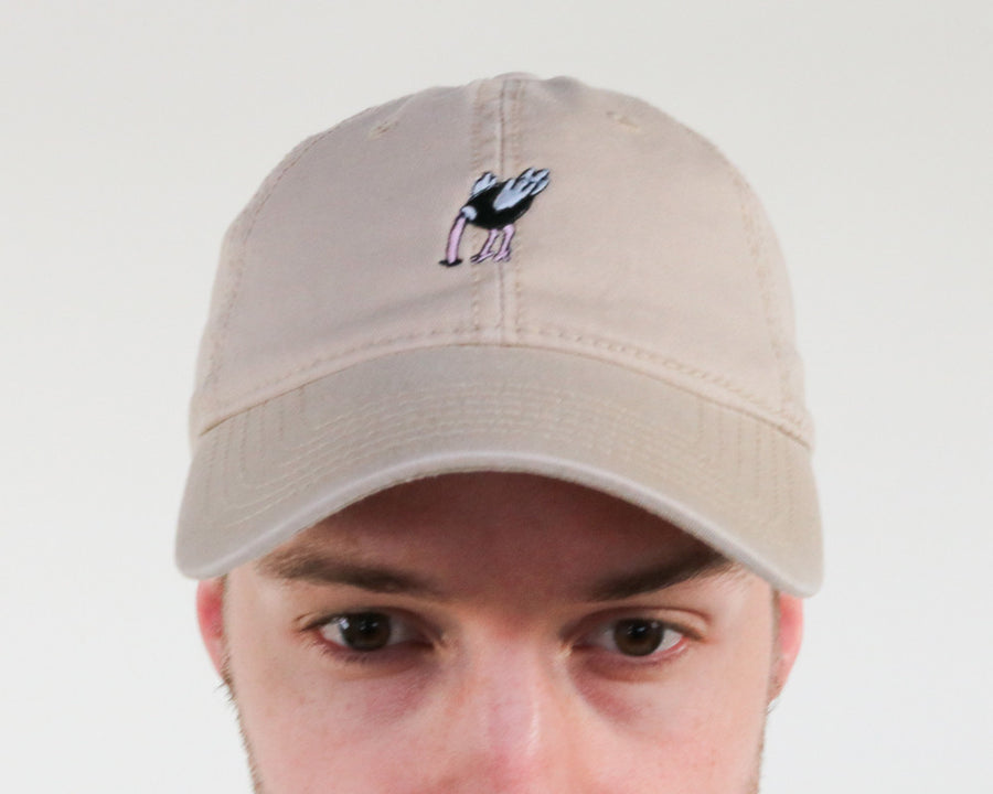 not today | dad hat