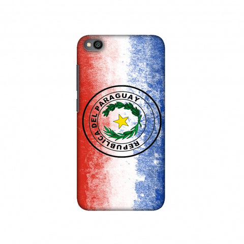 Love For Republic Of Paraguay Slim Hard Shell Case For Redmi Go