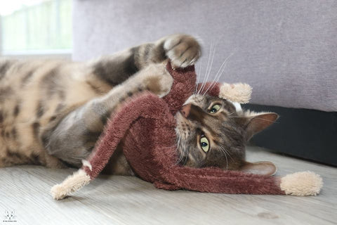 A catnip monkey - cat toy from Tigga Towers