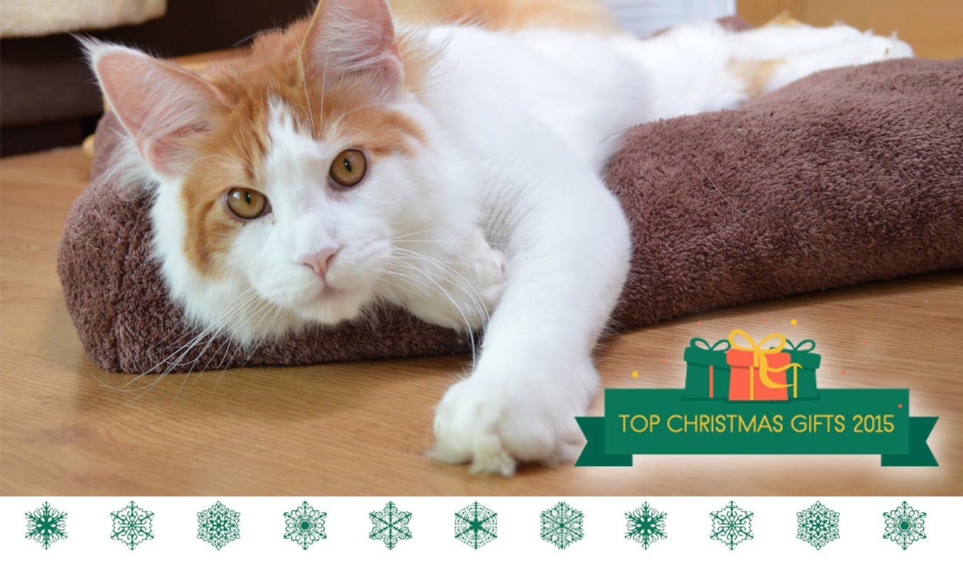 Christmas gifts for cats