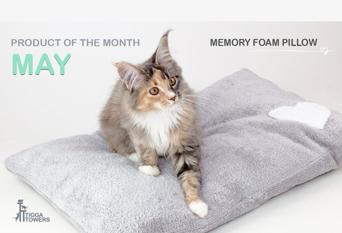 memory foam pillow for cats