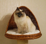 Cat Igloo with scratching post - Tigga Towers