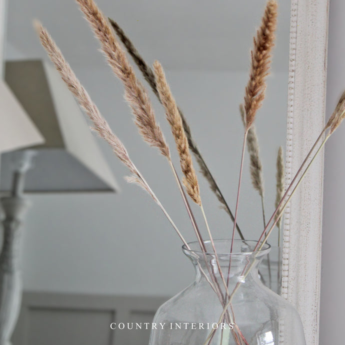 Pampas Grass Set - Six Pieces