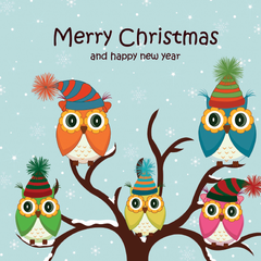 Owls Christmas Cards (Pack of 10)