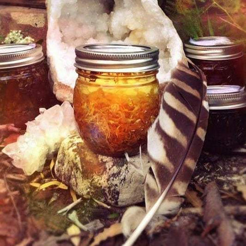 Harmonic Herbalism Online - Herbal Studies Course