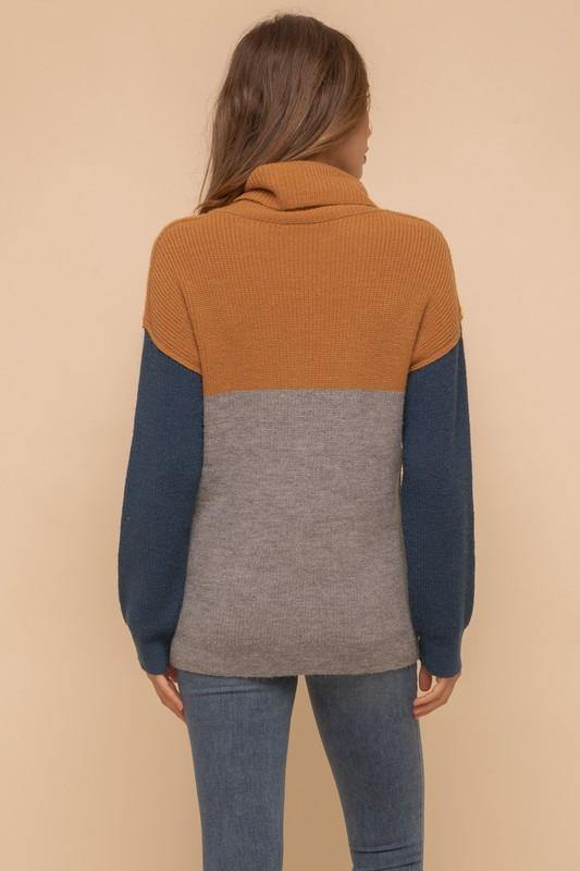 Color Block Turtleneck - Nigh Road