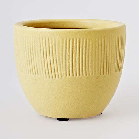 Yarn Cup Lemon