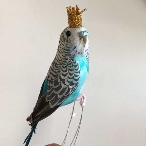 Regal Feathered Budgie Ornament