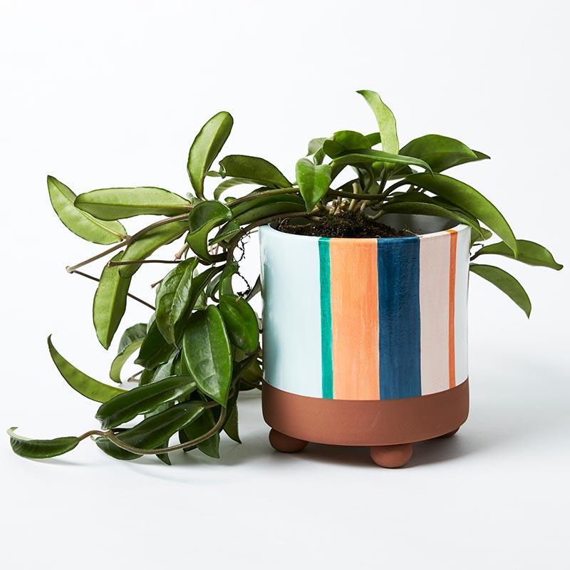 Woodstock Planter in Blue