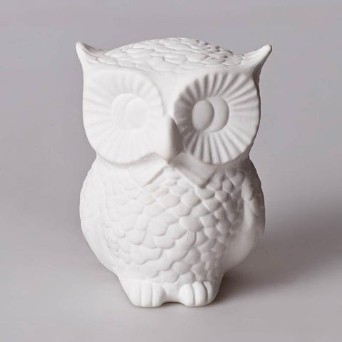 Bone China Big Eye Owl Lamp
