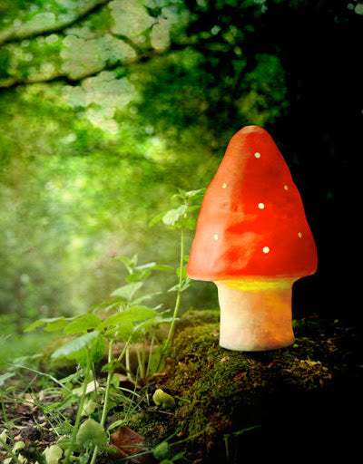 Toadstool Small Night light by Heico