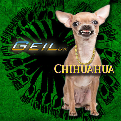 Chihuahua - single
