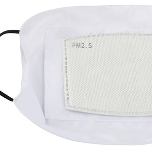 CoVid-19 - Face Mask and Dust Cover with Filter