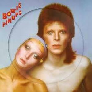 David Bowie Pin Up Picture Vinyl LP Record Store Day Famous Rock Shop Newcastle NSW Australia