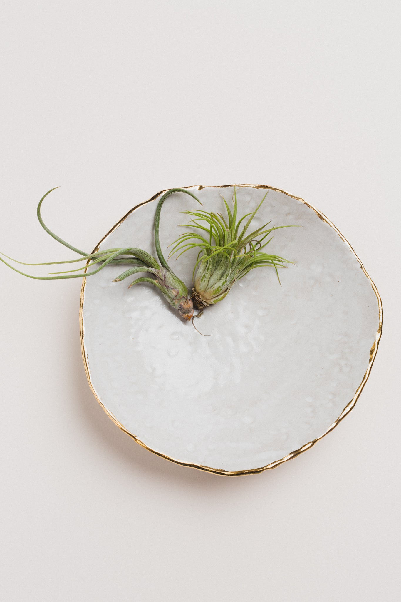 Irregular Circle Platter Decor The Object Enthusiast - Hello Holiday