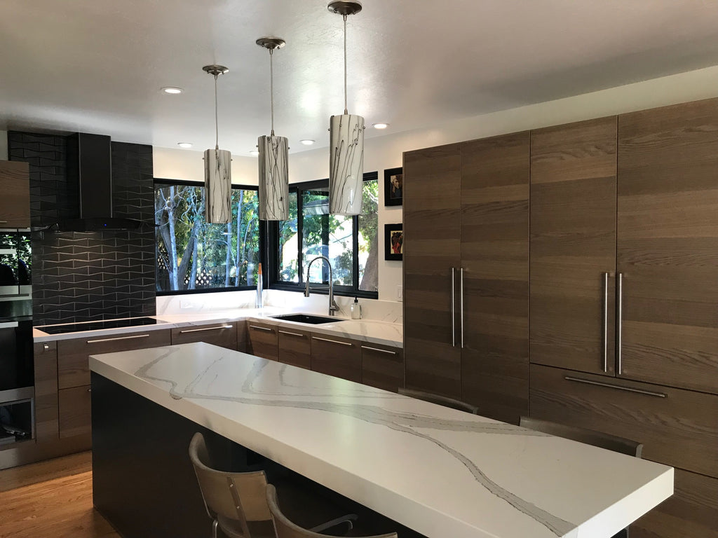 Contemporary Kitchen, Chabot Park