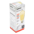 6.5W LED Edison Bulb, medium base