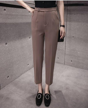Trousers for women Spring-Autumn New Office Lady 2017 Women pants female Fashionrricdress-rricdress