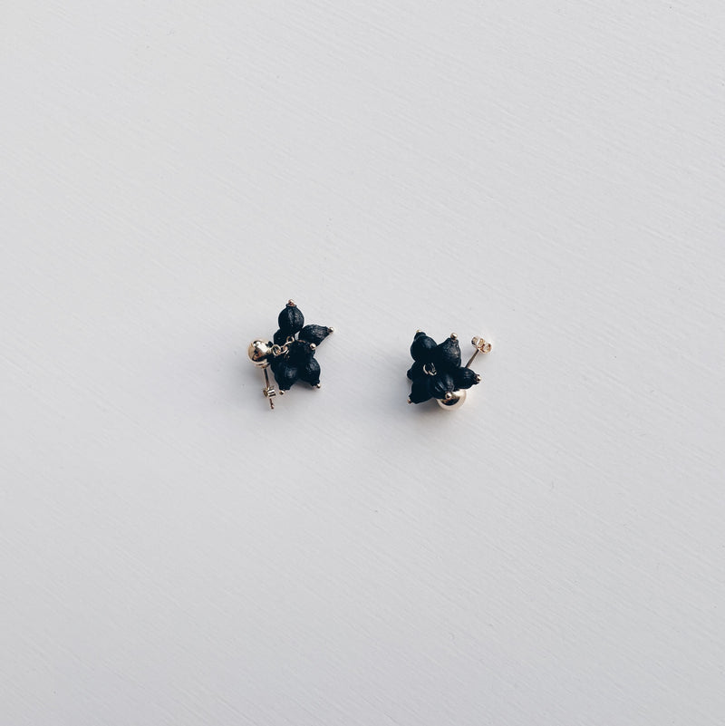 BOTANICAL EARRINGS : VIBURNUM TINUS 7 (GOLD STUDS)- ピアス