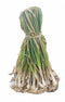Nagaland Local Spring Onions (Scallions), 1 Bunch