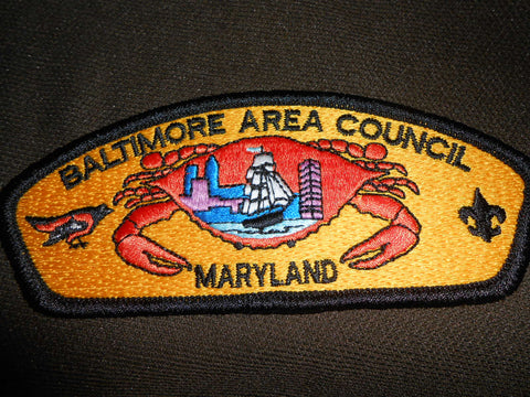 Baltimore Area Council s10  csp