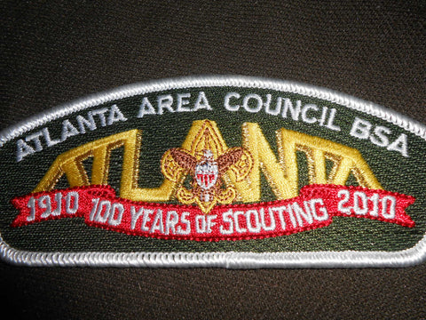 Atlanta Area Council s31  csp