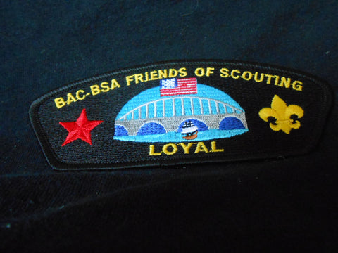BAC Friends of Scouting SA14 CSP