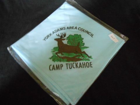 Camp Tuckahoe Neckerchief light blue