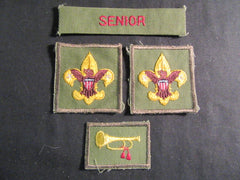 boy scout insignia - the carolina trader