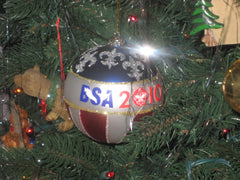 Boy Scout Christmas Ornament  - the carolina trader